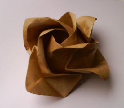 http://popolon.org/gblog2/wp-content/uploads/2008/06/rose_origami.jpg